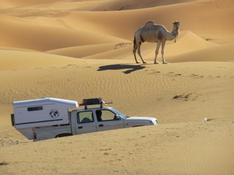 Tipi4x4 au Maroc